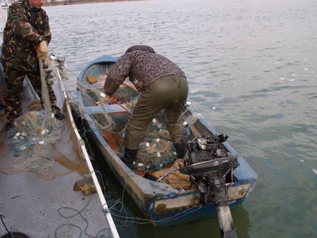 Infractiuni pe drumurile publice si Pescuit ilegal in Delta Dunaƒrii