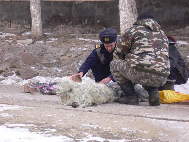 Braconaj cinegetic in Delta Dunarii si Plase monofilament confiscate
