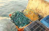 Plase de pescuit interzise si Infracţiune pe drumurile publice