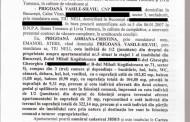 "Silviu Prigoana – ""Adriana Bahmuteanu minte din nou cu nerusinare"""