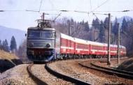Trenul Regio 3622 Huedin – Cluj Napoca a lovit o cireadă de bivoli