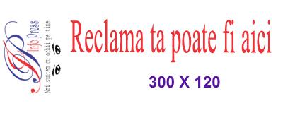 Reclame 300×120