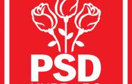 Organizatia Judeteana de Femei Constanta a Partidului Social Democrat alaturi de Centrul de batrani Poarta Alba