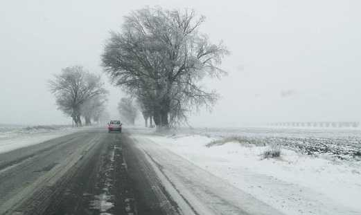 Bulgaria - cod galben de ninsori în 15 regiuni