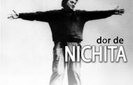 Dor de Nichita la Constanta