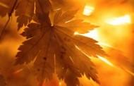 23 septembrie, echinocțiul de toamnă