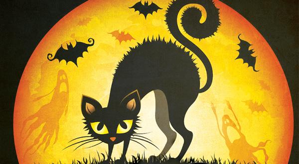 Halloween-ul reclamat la Protecţia consumatorilor