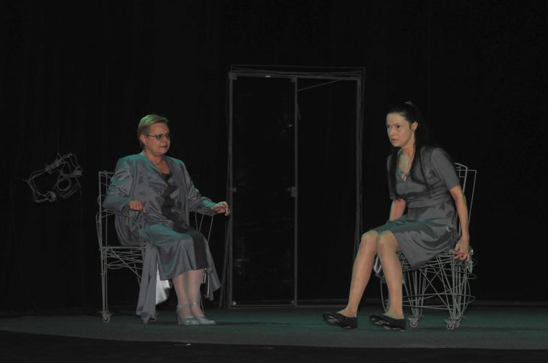 Tennesse Williams pe scena Teatrului de Stat Constanţa