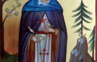 7 august: Sfânta Cuvioasă Teodora de la Sihla