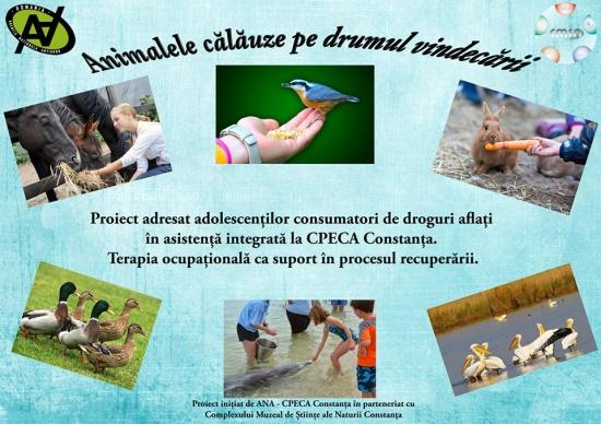 Terapie prin îngrijirea animalelor, pentru consumatorii de droguri minori