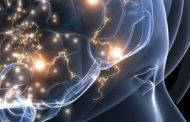 Ce spune fiecare parte a capului despre sănătatea noastră?