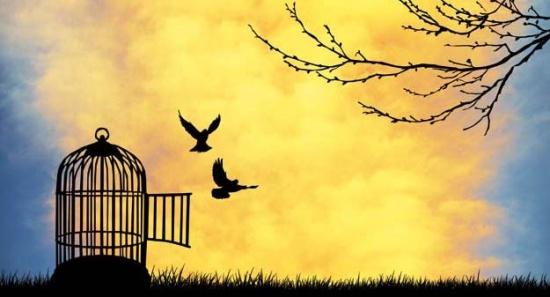 """3 motive pentru care rămânem în """"captivitate"""""""
