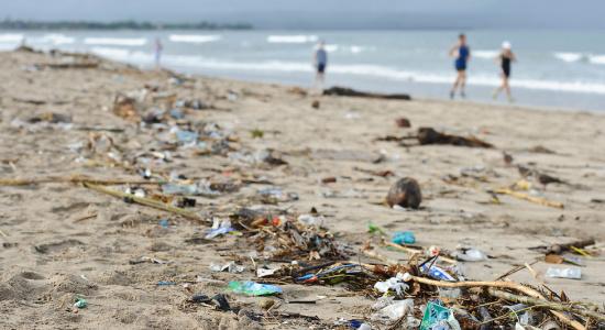 Plajele de pe litoralul românesc, intoxicate cu... plastic!