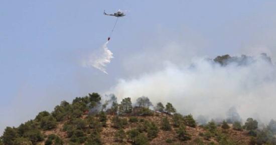 Italia: Incendii de pădure în zona de centru și sud