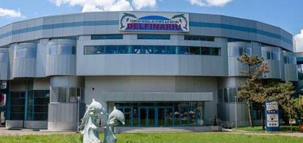 Gratuit la muzee și Delfinariu de Ziua Dobrogei