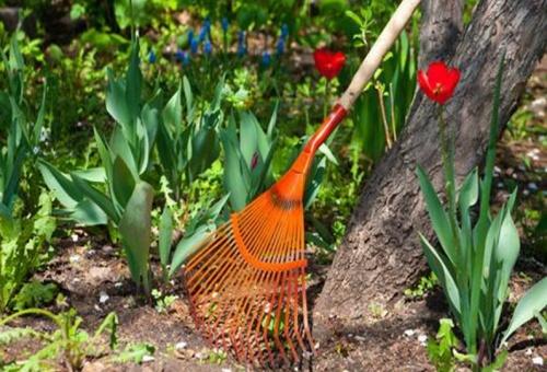 Începe campania de curăţenie de primăvară la Constanța
