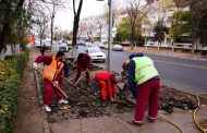 Continuă reabilitarea trotuarelor din Constanța