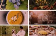 Festivalul Gastronomiei și Vinului Românesc