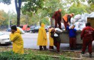 Cod galben de vreme severă la Constanța