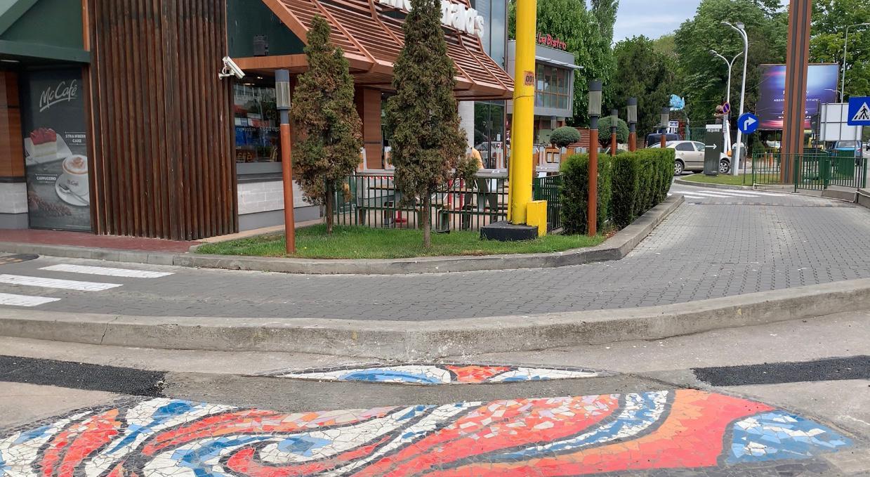 Studenții voluntari ai Facultății de Arte vor reface mozaicul de la Delfinariu