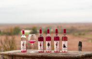 """Darul Dobrogei. Colecția de vinuri """" 7 Fete""""(FOTO)"""